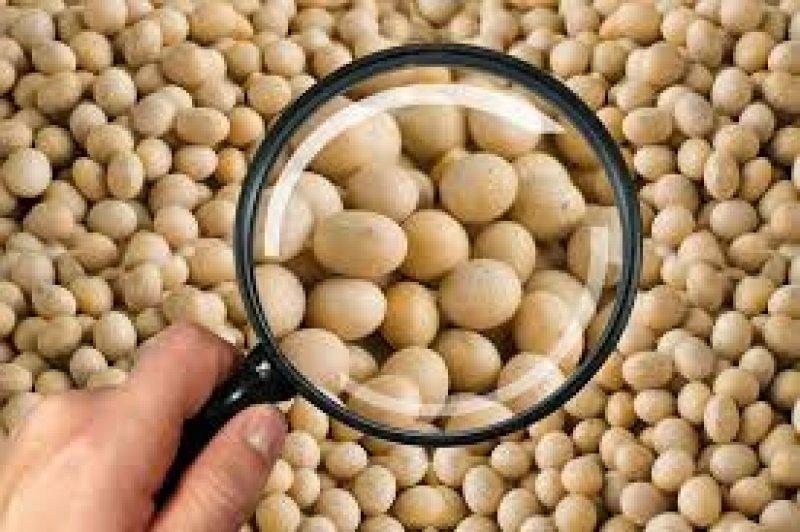 Estados do Centro-Oeste propõem ICMS sobre soja exportada