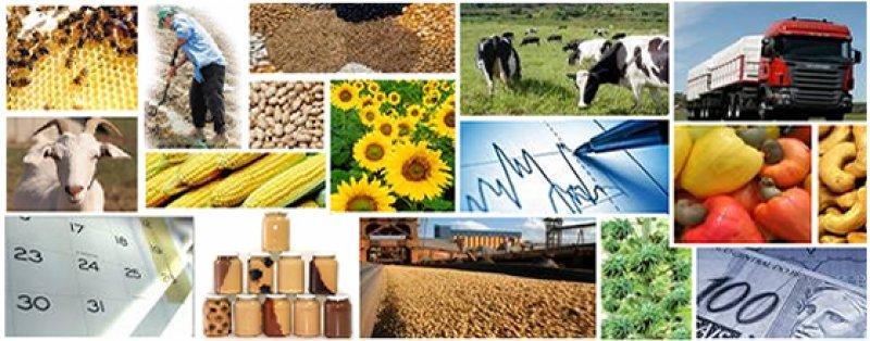 Agronegócio, parte promissora do PIB